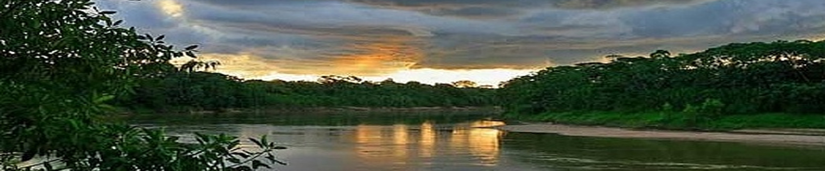 Amazon Peru – Sandoval Lake Lodge - Amazon Wildlife