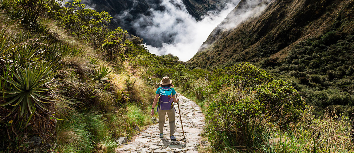 Treks to Machu Picchu by Inca Trail - Amazon Wildlife